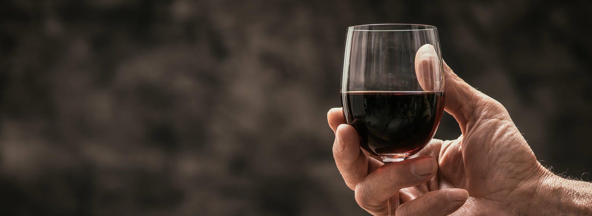 Vineká Wine Business